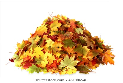 Download Free Png Leaf Pile Images Stoc 864694 Png Images Pngio
