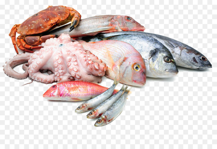 Fish And Seafood Png - Download Free png Seafood Asado Fish as food Squid as food ...