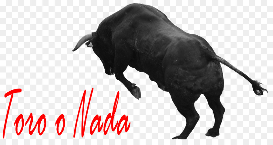 Running Of The Bulls Png - Download Free png Spanish Fighting Bull Horn Running of the Bulls ...