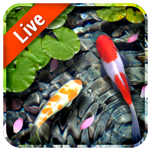 download koi fish live wallpaper on pc mac with appkiwi apk koi live png for pc 512 512