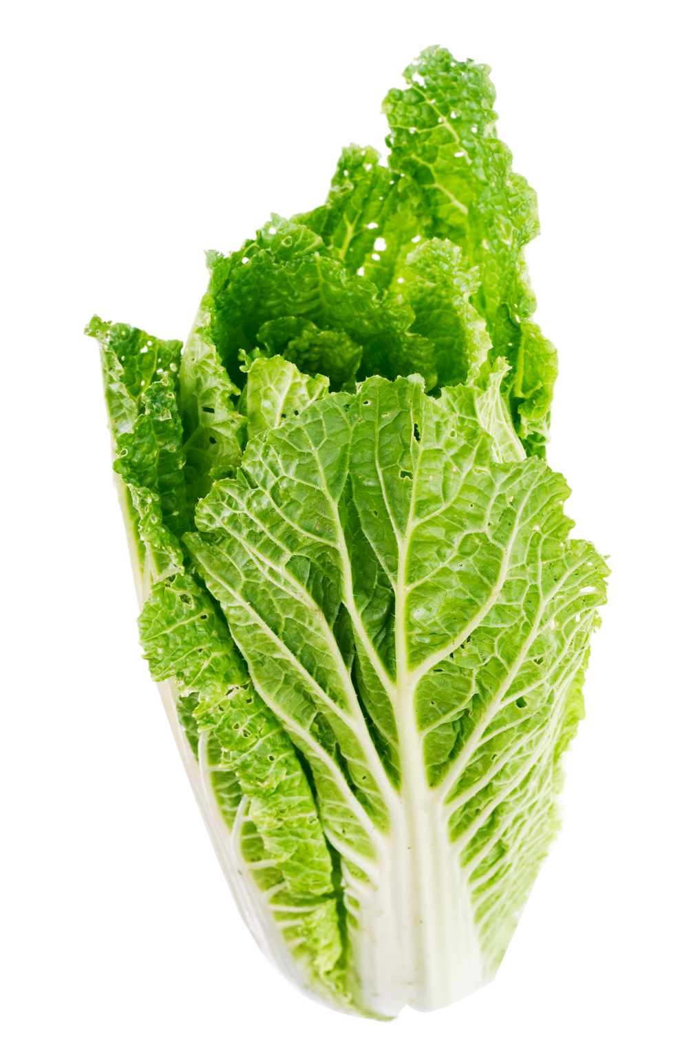 Lettuce Leaves Png Free Lettuce Leaves Png Transparent Images 163786 Pngio