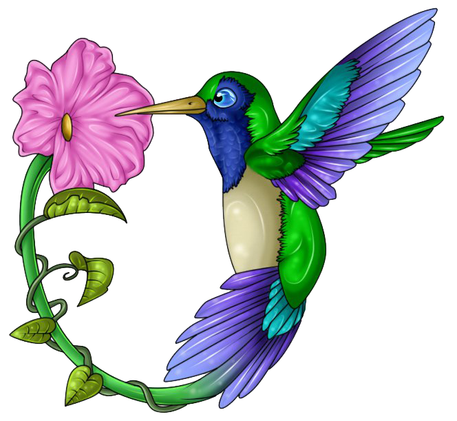 Hummingbird Tattoos Png - Download PNG image - Hummingbird Tattoos Free Download Png 441