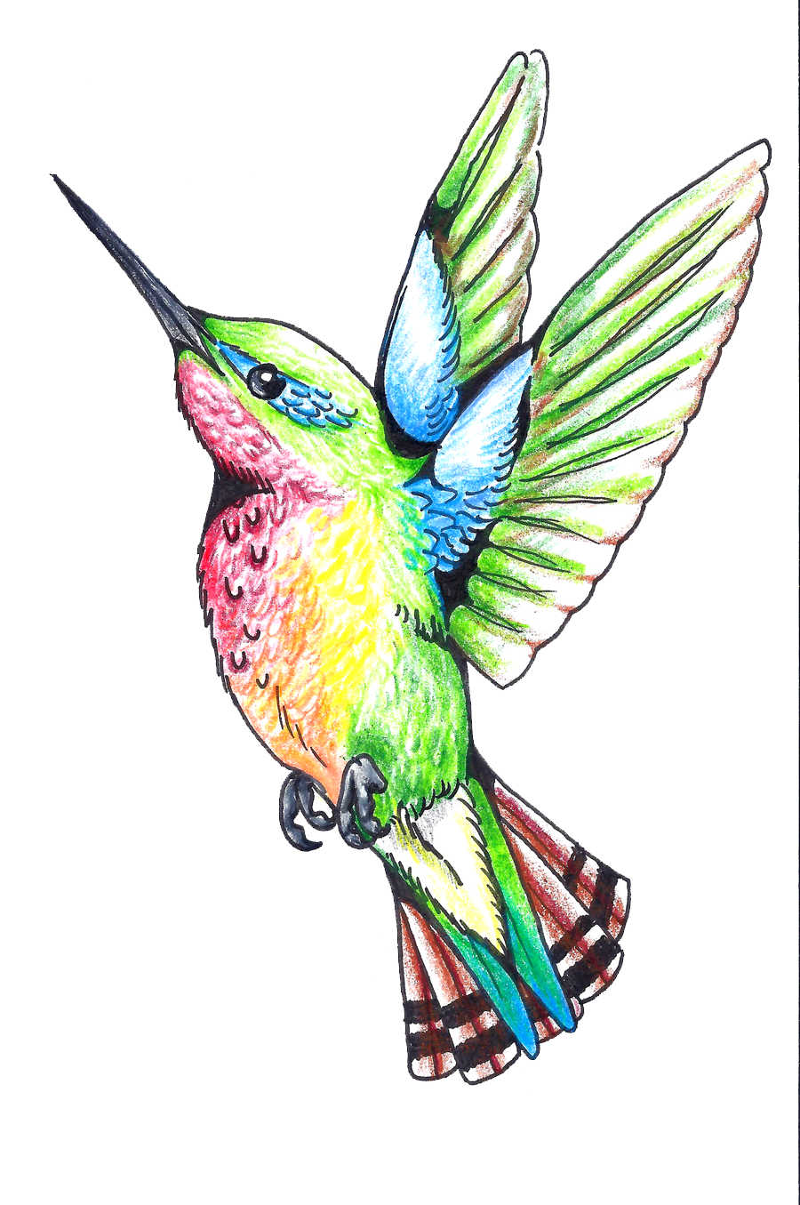 Hummingbird Tattoos Png - Download PNG image - Hummingbird Tattoos Png Clipart 445