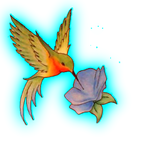 Hummingbird Tattoos Png - Download PNG image - Hummingbird Tattoos Png Hd 520