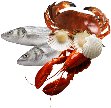 Fish And Seafood Png - Download Seafood Png - Fish And Seafood Png PNG Image with No ...