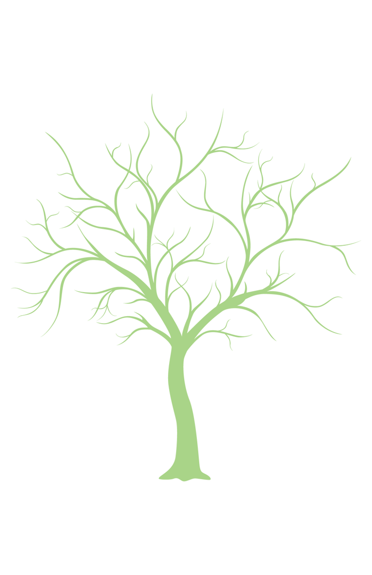 This is a picture of Printable Tree Template pertaining to bare tree
