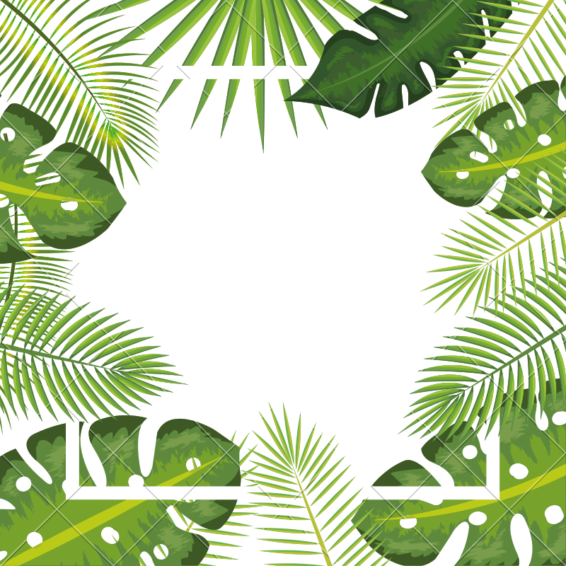 Tropical Background Pictures Png & Free Tropical ...