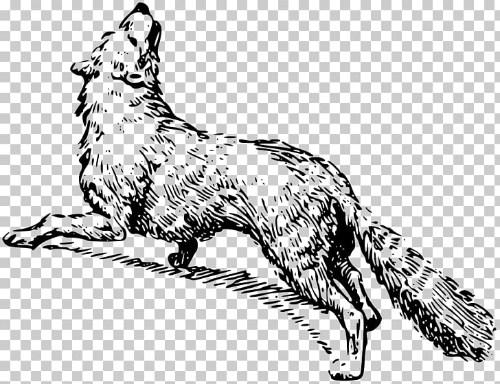 Arctic Fox Drawing Png - Drawing Black and white , arctic fox PNG clipart | free cliparts ...