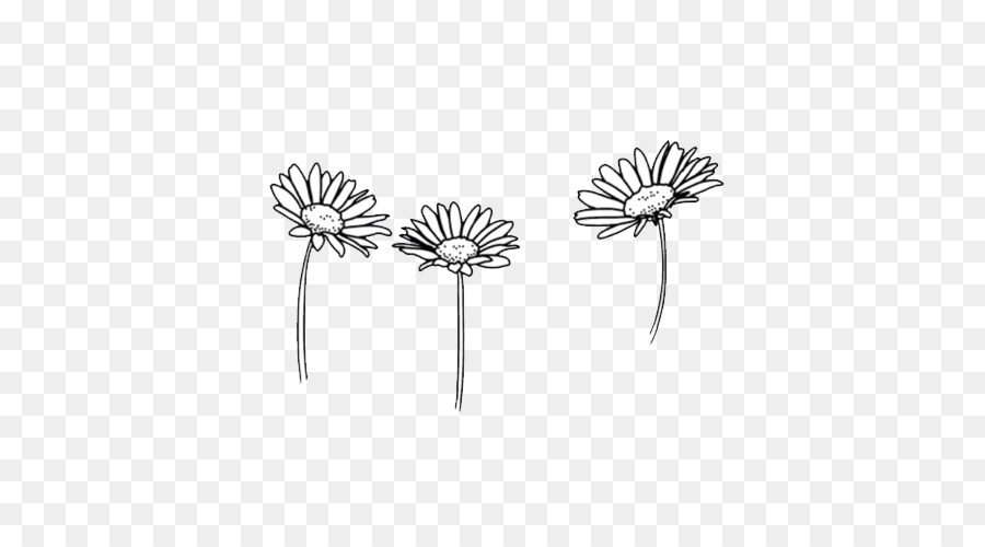 Cute Black And White Png Free Transparent Images 27843 Pngio