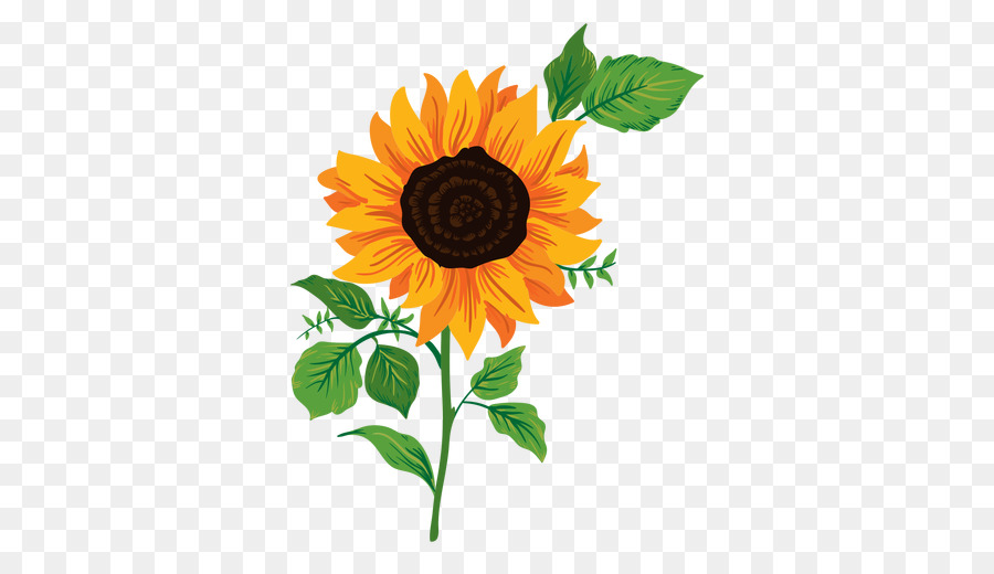 Sunflower Drawing Png - Drawing Of Family png download - 512*512 - Free Transparent Common ...