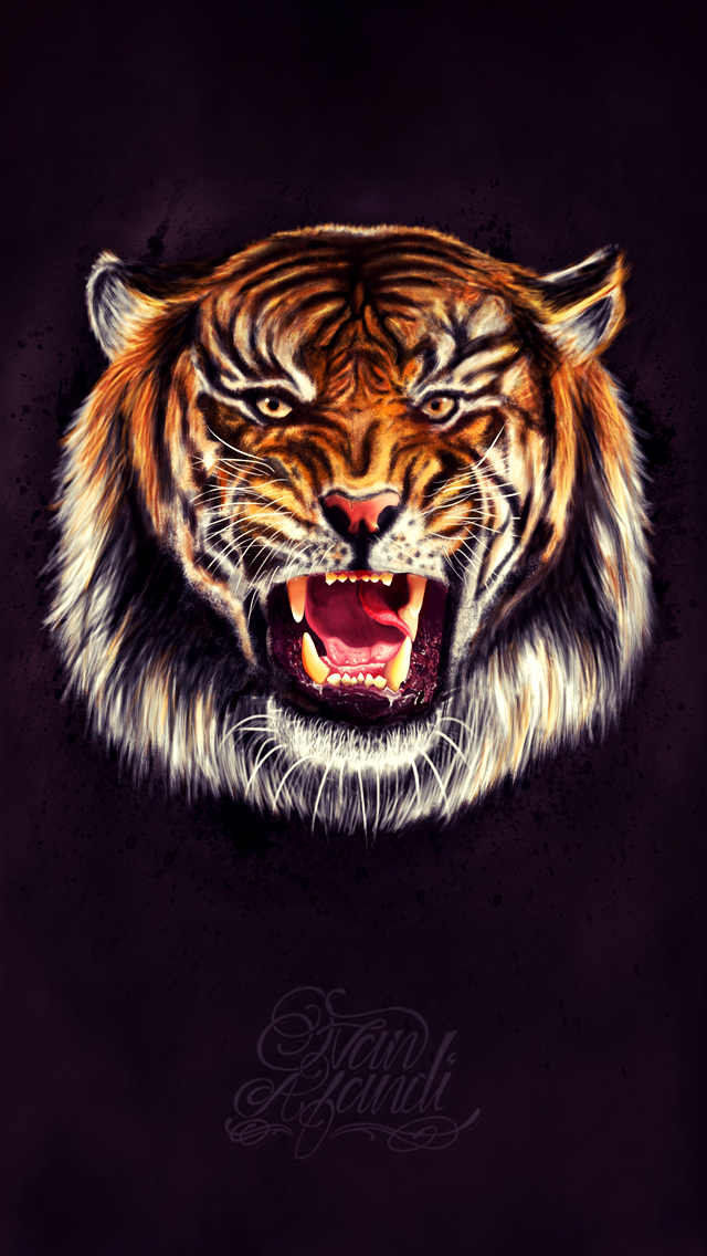 Dribbble Tiger Iphone 5 Wallpaper Png 1452570 Png Images Pngio