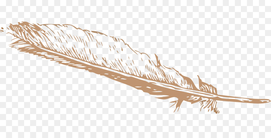 Eagle Feather Png - Eagle feather law Bird Clip art - feather png download - 1920*960 ...