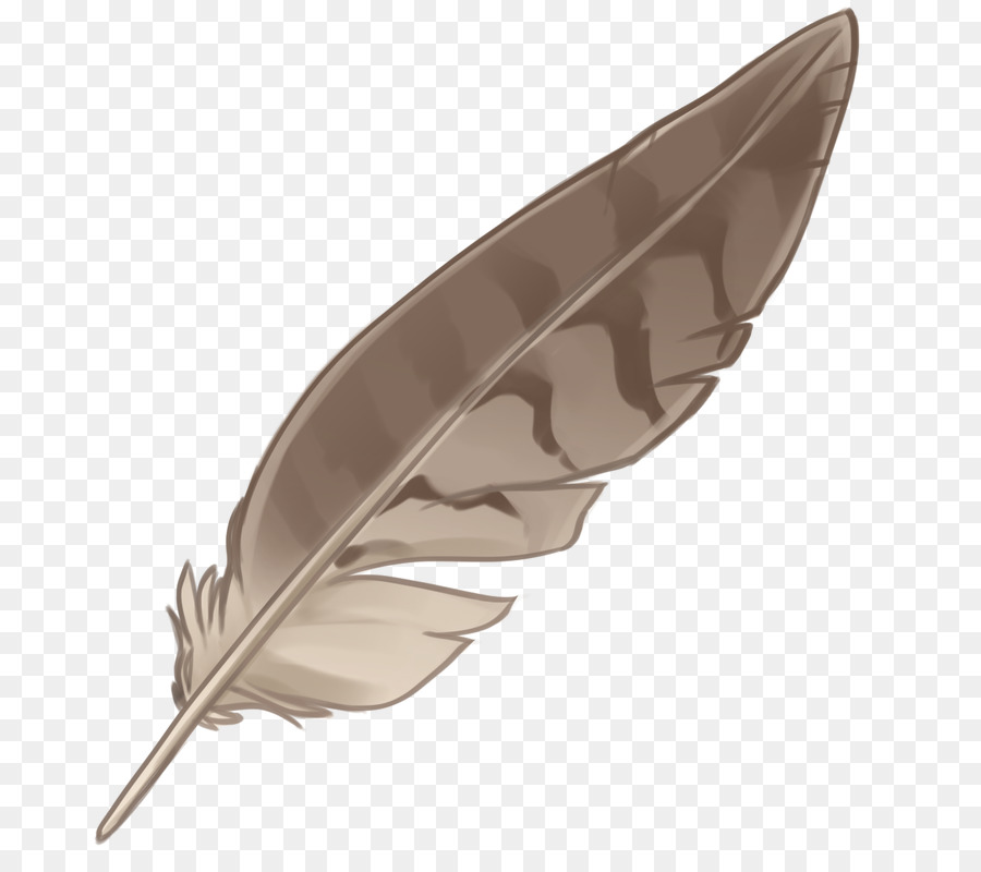 Eagle Feather Png - Eagle feather law Native Americans in the United States - feather ...