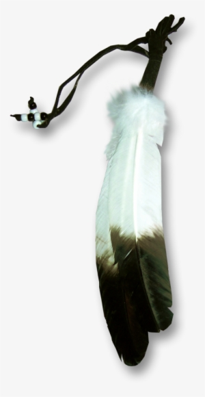 Eagle Feather Png - Eagle Feather PNG & Download Transparent Eagle Feather PNG Images ...