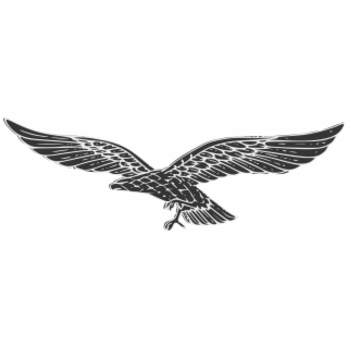 Swastika Eagle Png - eagle.png - Download Png Image Report - Nazi Eagle Without ...
