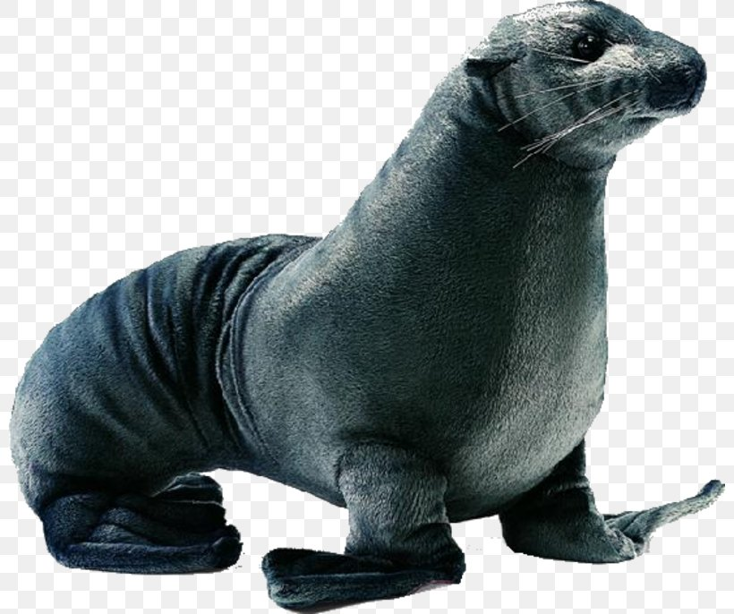 Eared Seal Png - Earless Seal Eared Seal Plush Stuffed Toy, PNG, 800x686px, Earless ...