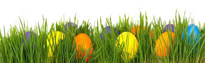 Easter Eggs İn Grass Png - Easter Grass Eggs PNG Picture   PNG Arts
