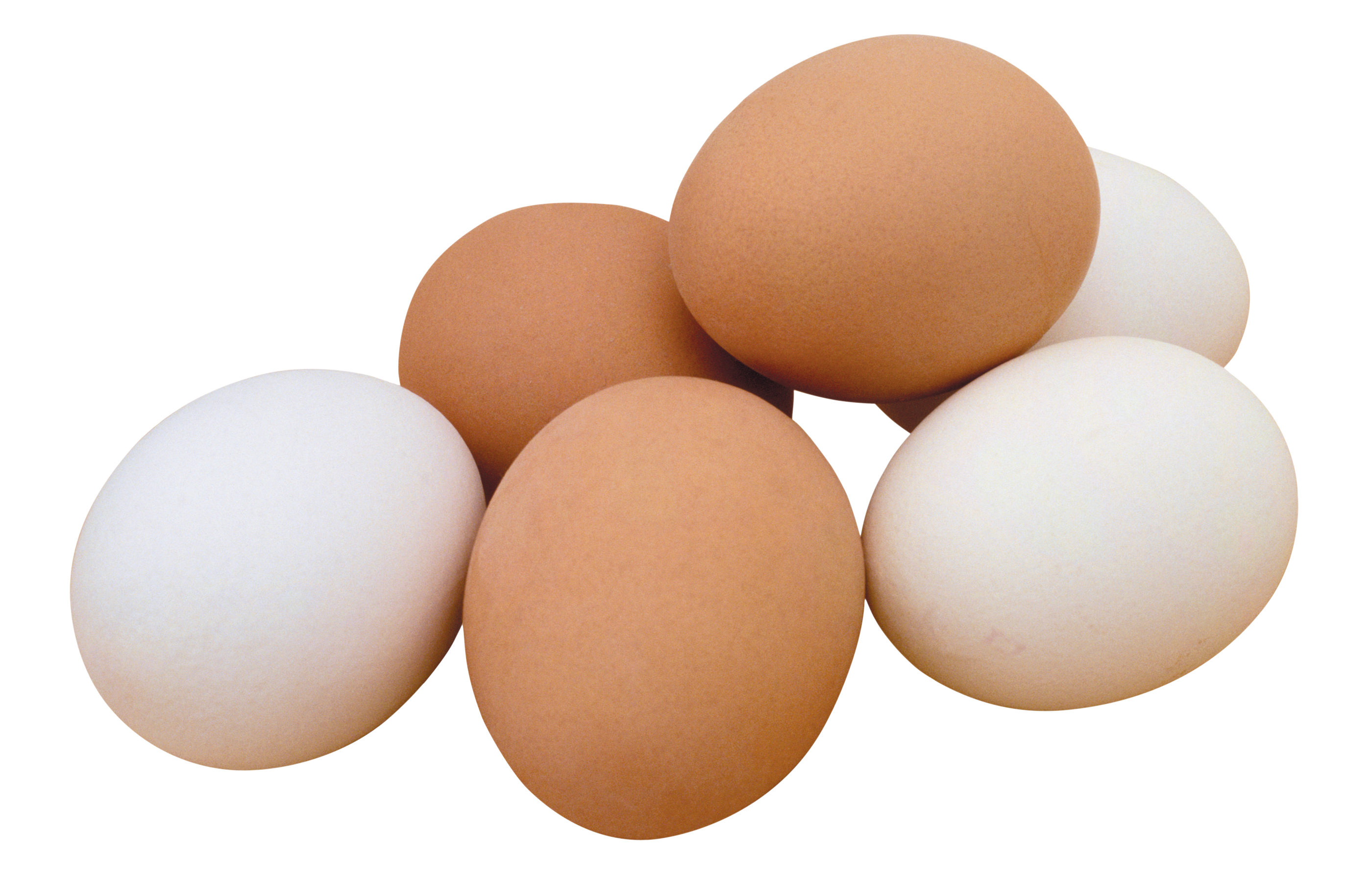 Chicken With Egg Png - Eggs PNG image, free download PNG pictures of eggs
