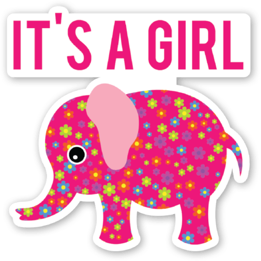 Girl Elephant Png & Free Girl Elephant.png Transparent ...