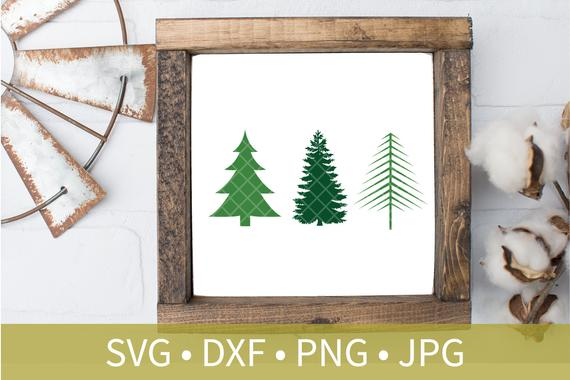 Evergreen Branch Cookie Cutter Png - Evergreen Pine Trees SVG DXF png eps clipart file Instant   PNGio