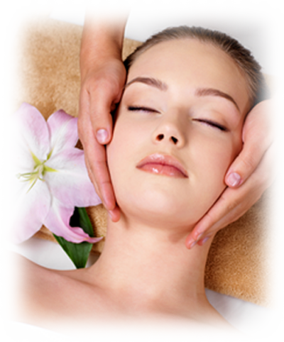 Facial Massage Png Vector Clipart Psd 593825 Png Images Pngio