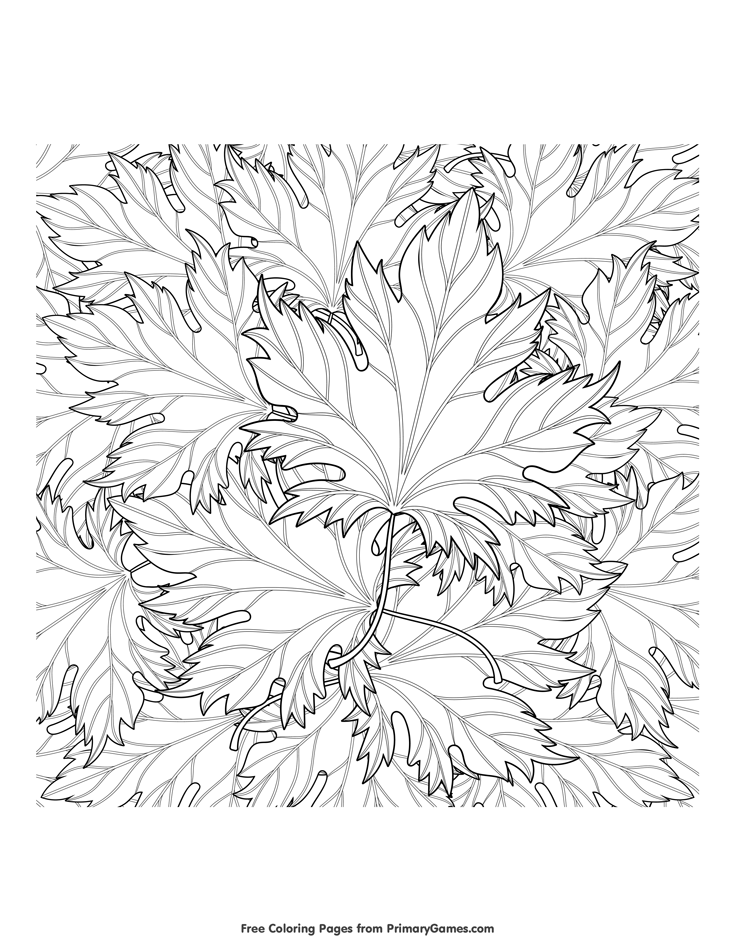 - Autumn Leaves Coloring Pages Png & Free Autumn Leaves Coloring Pages.png  Transparent Images #63932 - PNGio