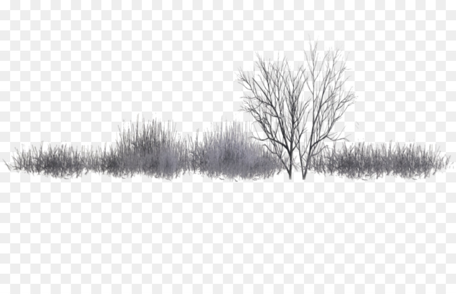Landscape Drawing Png - Family Tree Background clipart - Tree, Landscape, Drawing ...