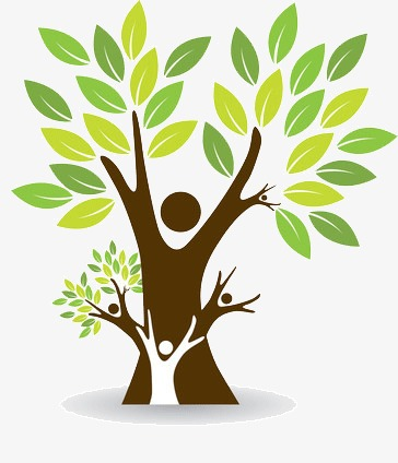Family Tree Png Free Family Tree Png Transparent Images 2563 Pngio