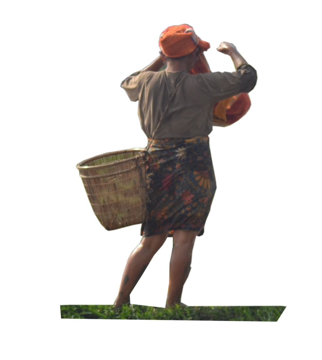 Farmer Png - Farmers ( Stock PNG ) by Cucu-Fuang