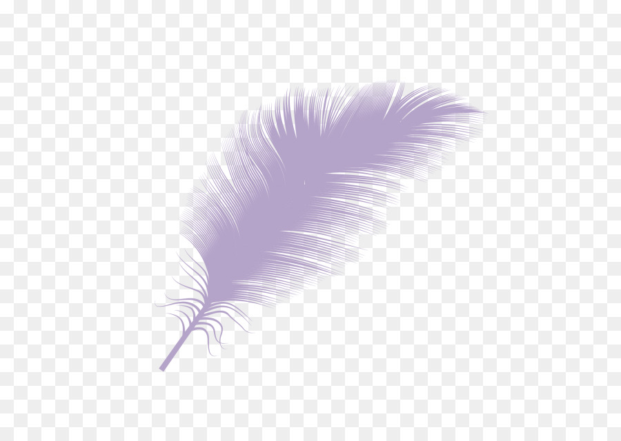 Down Feather Png - Feather Feather png download - 634*634 - Free Transparent Feather ...