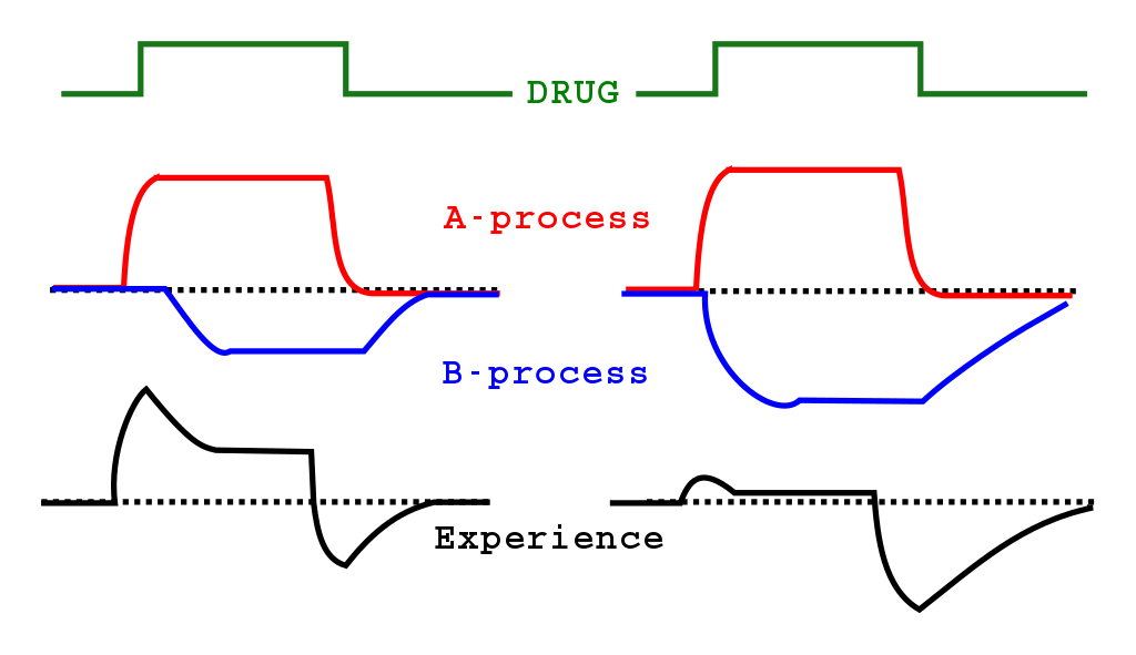 Opponent Process Png - File:Opponent process theory of drug addiction.svg - Wikimedia Commons
