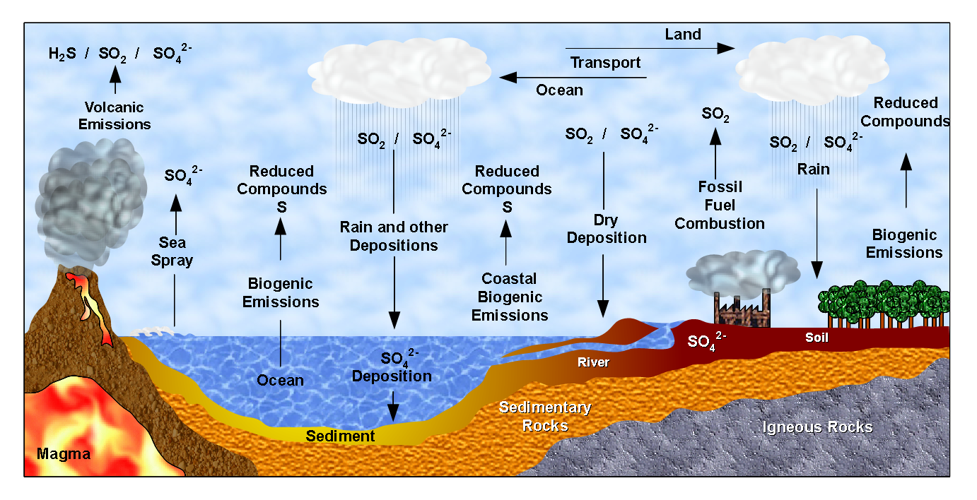 Sulfur Cycle Png - File:Sulfur Cycle (Ciclo do Enxofre).png - Wikimedia Commons
