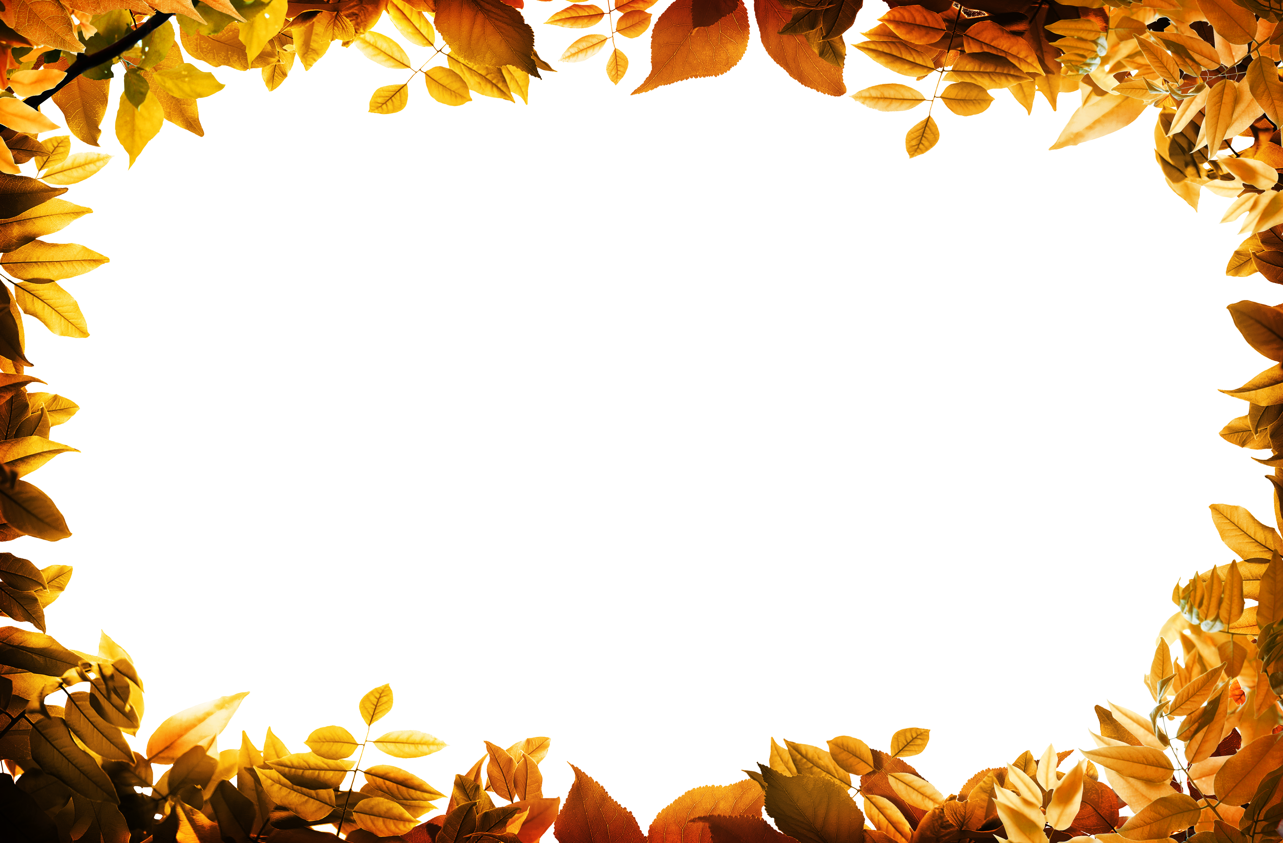 Fall Computer Backgrounds Png Free Fall Computer Backgrounds Png Transparent Images 55853 Pngio