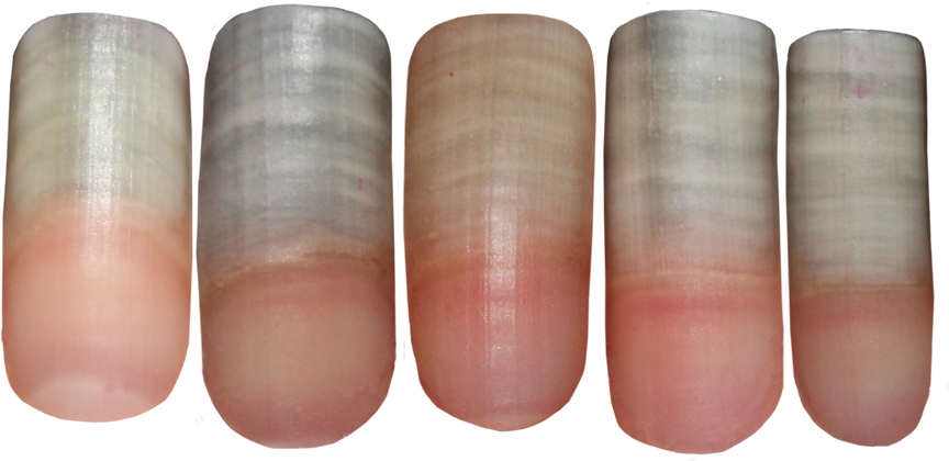 Finger Nail Png - Fingernail PNG Stocks by Thy-Darkest-Hour ...
