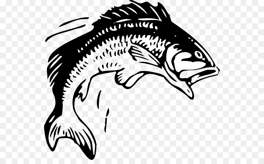 Bass Fishing Png Black And White - Fishing Free content Bass Clip art - Bass Jumping Cliparts png ...