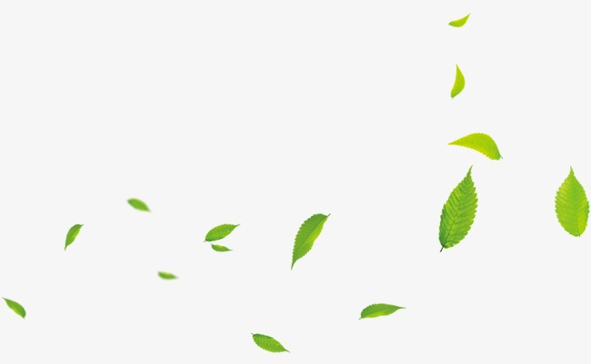 Png Leaf - Floating Leaves, Leaves, Green, Green Leaves PNG Image and Clipart ...