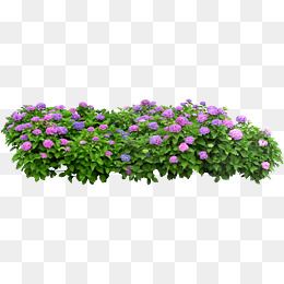Flower Garden Png Vector Psd And Clip 457741 Png Images Pngio