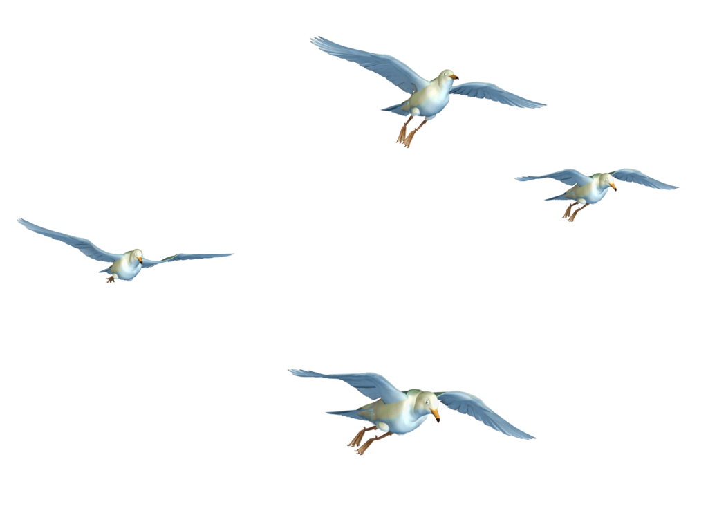 Birds Flying Png - Flying Bird PNG Transparent Flying Bird.PNG Images. | PlusPNG