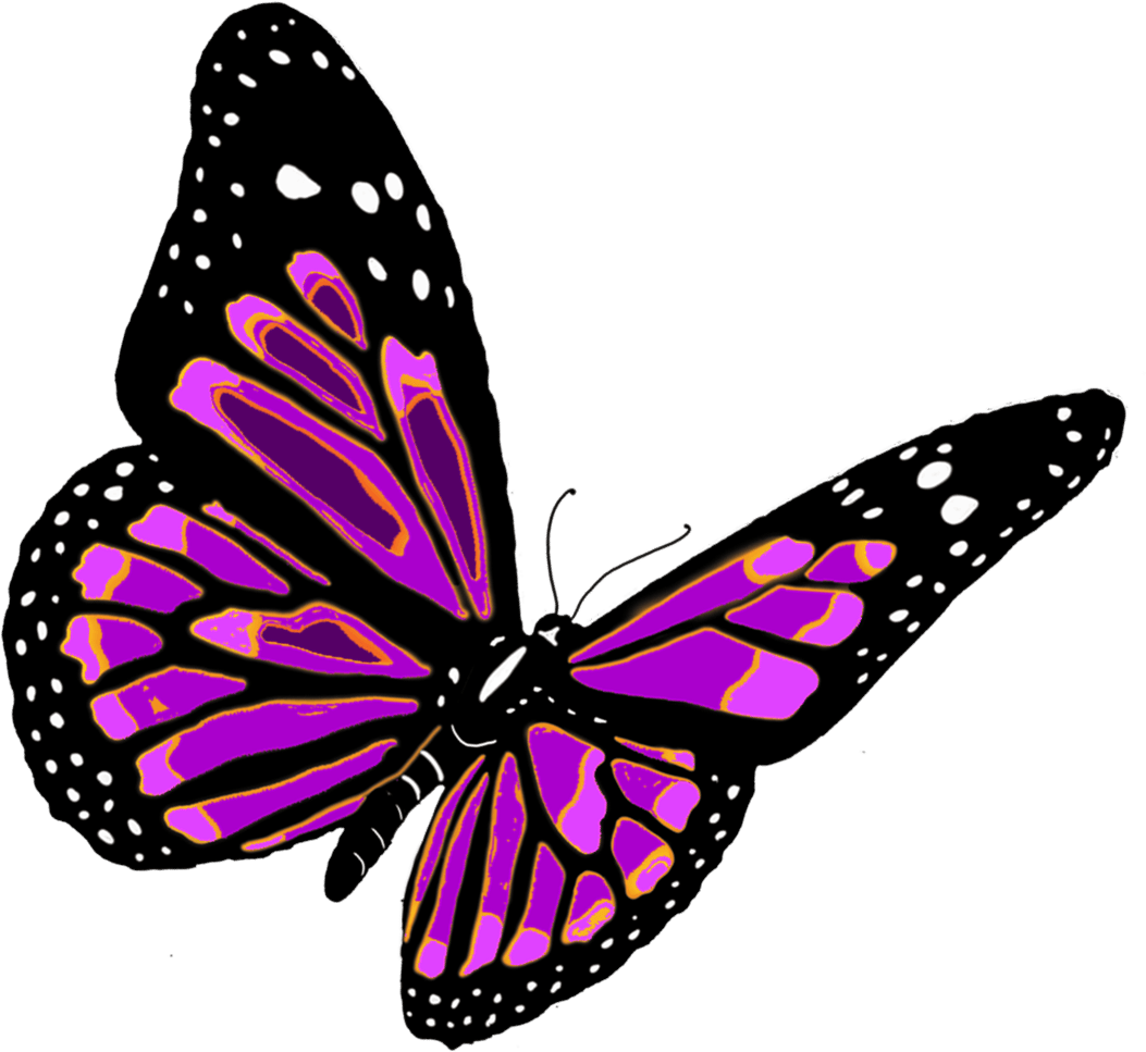 Butterfly Png - Flying Butterfly Png Image PNG Image