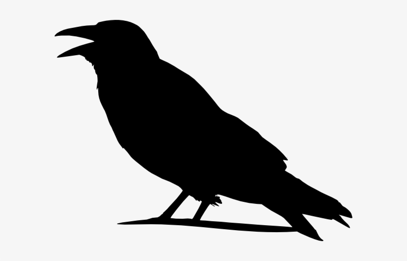Crow Outline Png - Folk Clipart Crow - Outline Images Of Crow - Free Transparent PNG ...