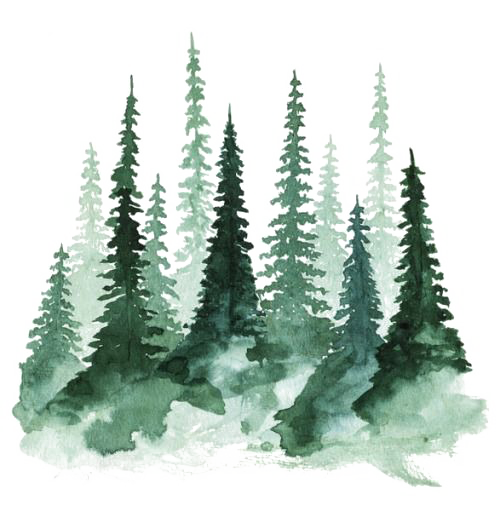 Forest Art Png - Forest PNG Pic | PNG All
