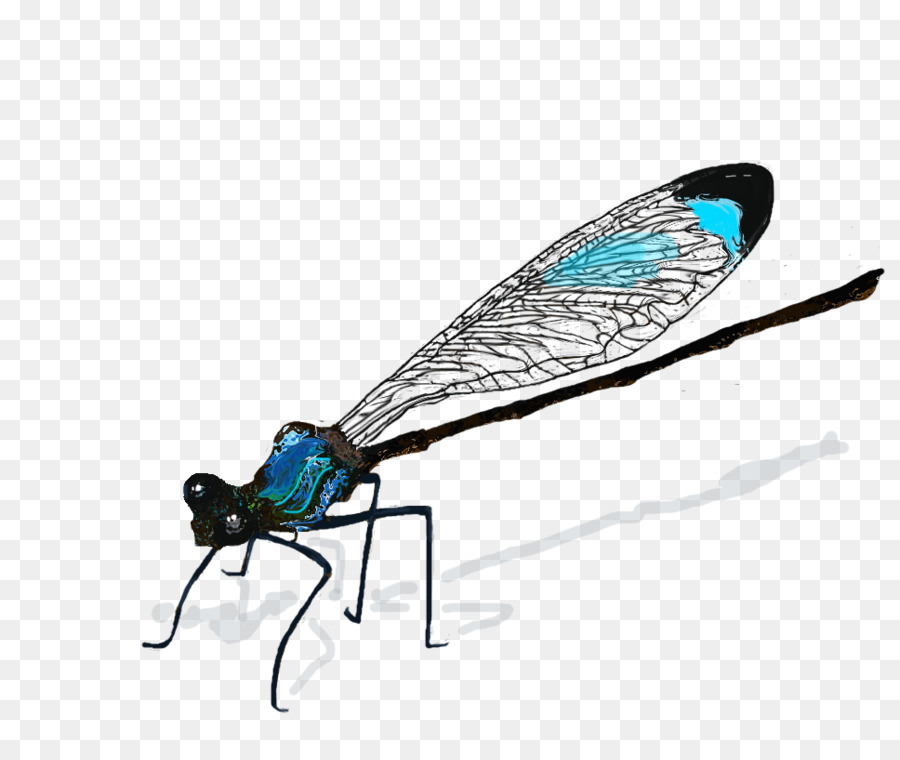Damselfly Png - Fox Drawing png download - 968*796 - Free Transparent Insect png ...