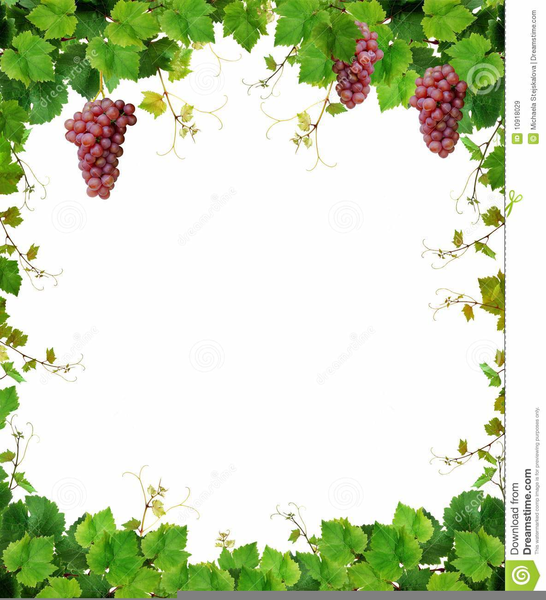 Wine Png Borders - Free Clipart Wine Borders | Free Images at PNGio - vector clip ...
