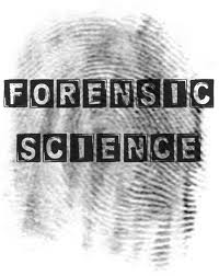 Free Forensics Cliparts Download Free C 904834 Png Images Pngio