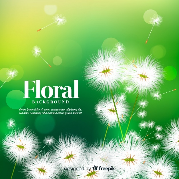 Lovely Background Png - Free Lovely floral background with realistic design SVG DXF EPS ...