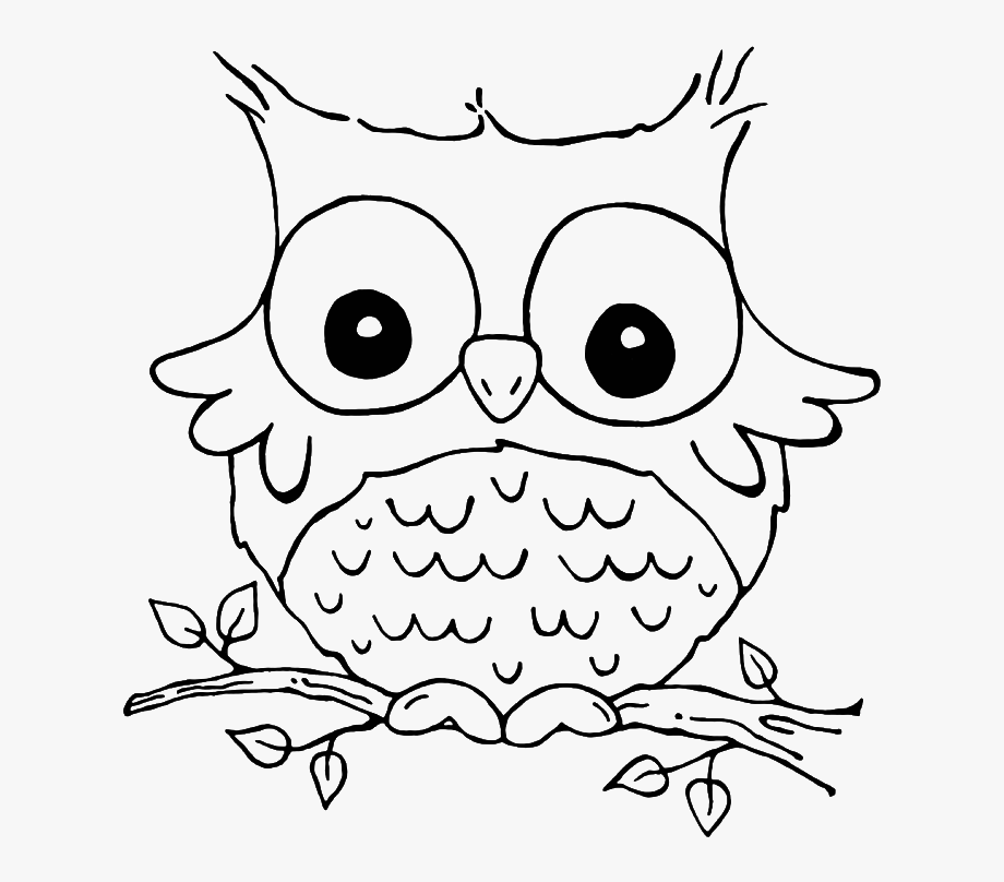 Free Owl Coloring Pages - Animal Colorin #2445330 - PNG Images - PNGio