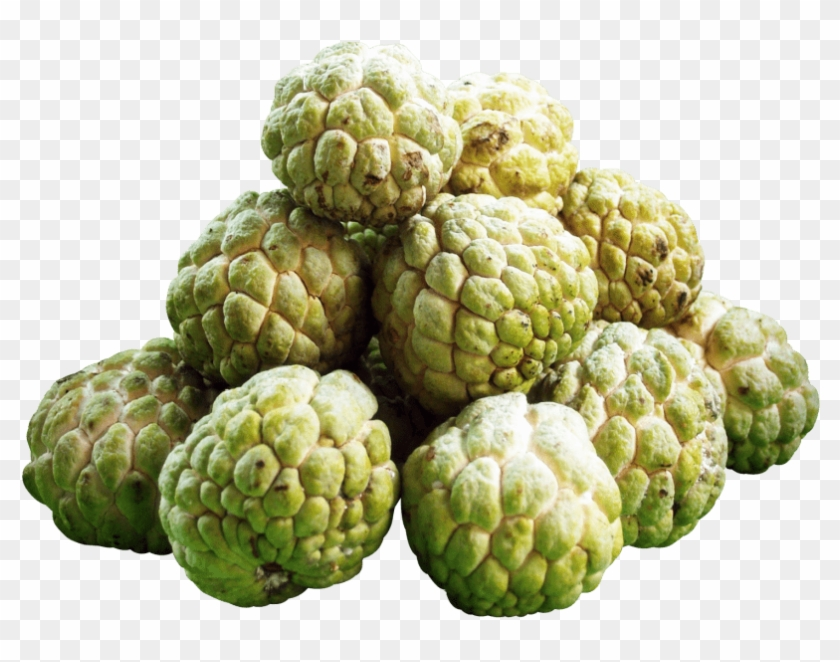 Custard Apple Png - Free Png Download Custard Apples Png Images Background - Custard ...