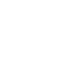 Brain Png White Free Brain White Png Transparent Images Pngio