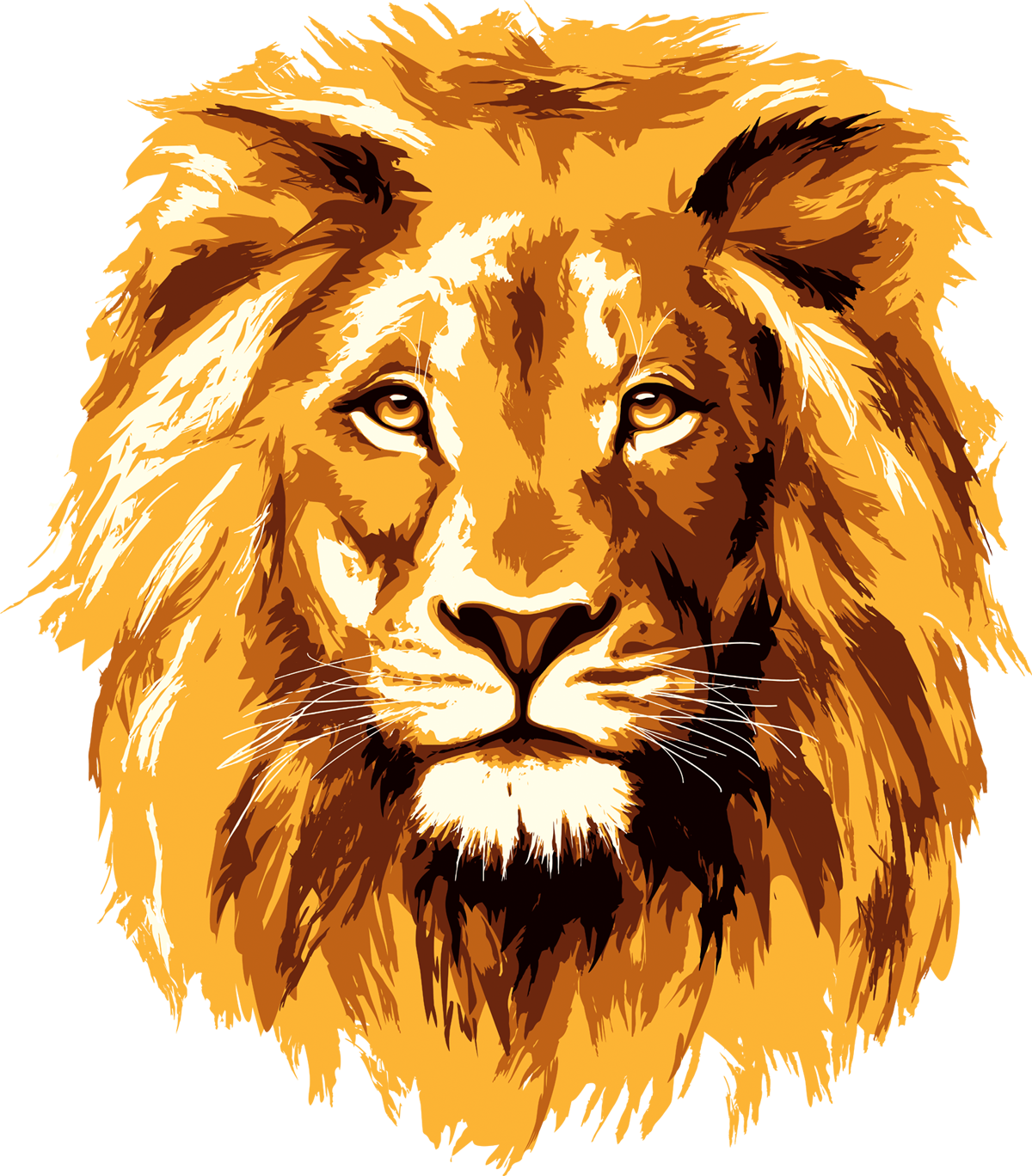 Lion Png - front face pre cut lion