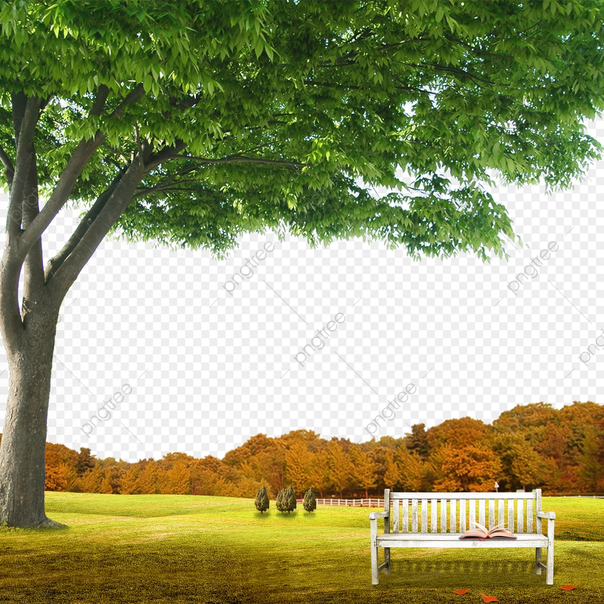 Cool Nature Backgrounds Png u0026 Free Cool Nature Backgrounds